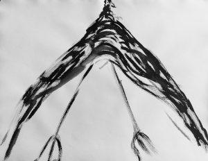 'Blackbird 7'   65 x 50